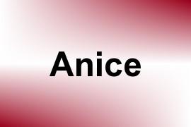 Anice name image
