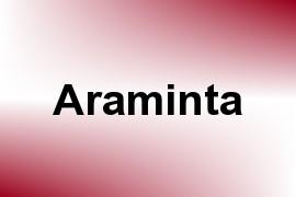 Araminta name image
