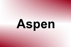 Aspen name image