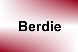 Berdie name image