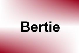 Bertie name image