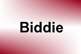 Biddie name image