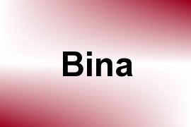 Bina name image
