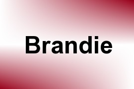 Brandie name image