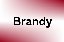 Brandy name image