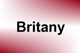 Britany name image
