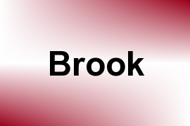 Brook name image