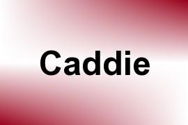 Caddie name image