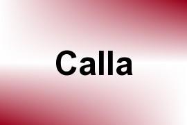 Calla name image