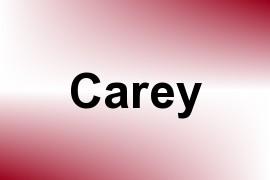 Carey name image