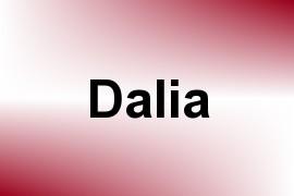 Dalia name image