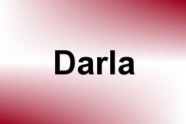 Darla name image