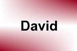 David name image