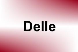Delle name image