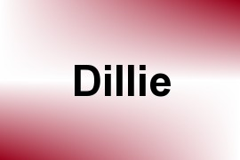 Dillie name image