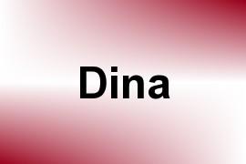Dina name image