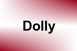 Dolly name image