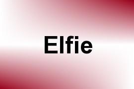 Elfie name image