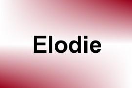 Elodie name image