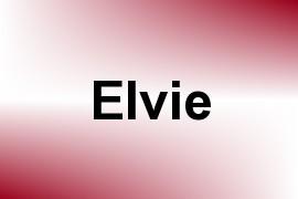 Elvie name image