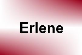Erlene name image