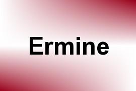 Ermine name image