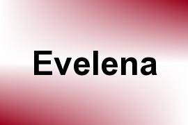 Evelena name image