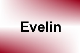 Evelin name image