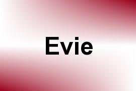 Evie name image