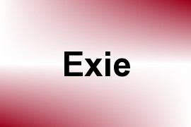 Exie name image