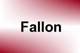 Fallon name image