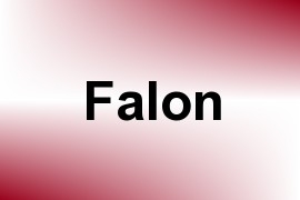 Falon name image