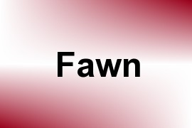Fawn name image