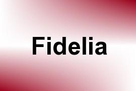 Fidelia name image