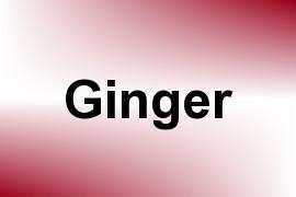 Ginger name image