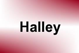 Halley name image