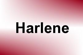 Harlene name image