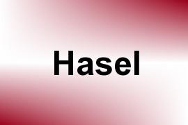 Hasel name image