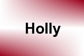 Holly name image