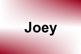Joey name image