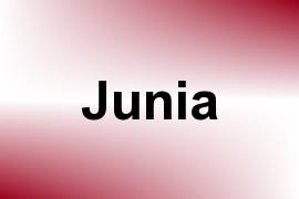 Junia name image