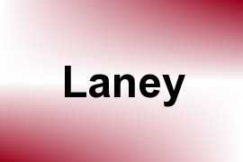 Laney name image