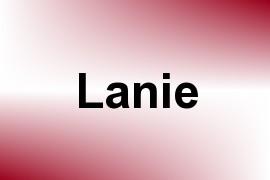 Lanie name image