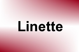 Linette name image
