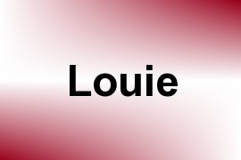 Louie name image