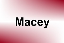 Macey name image