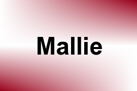 Mallie name image