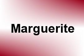 Marguerite name image
