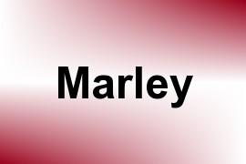 Marley name image