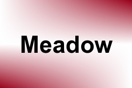 Meadow name image